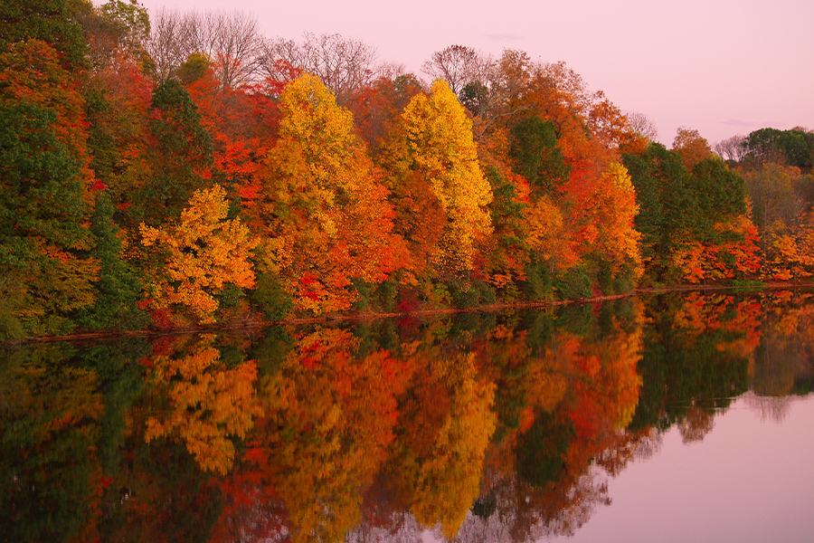 Pennsylvania - Mirrored Autumn Twilight at Lake in Pennsylvania